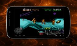 Double Dragon and Battletoads screenshot 2/4