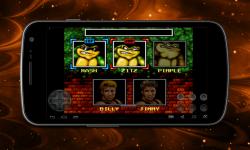 Double Dragon and Battletoads screenshot 4/4