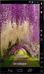 Tunnel Of Love Live Wallpaper screenshot 2/2