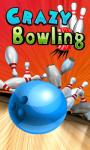 CRAZY Bowling Free screenshot 1/1