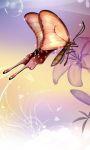 Butterfly Live Wallpaper HD screenshot 4/4