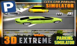 City Car Parking Simulator 3D screenshot 5/5