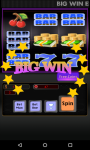 Double Diamond  Slot Machine screenshot 3/6