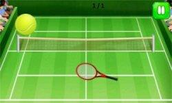 Court Tennis Play Sim - Rio De Janeiro 2016 screenshot 1/4