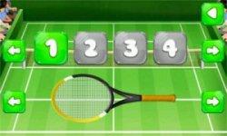 Court Tennis Play Sim - Rio De Janeiro 2016 screenshot 4/4