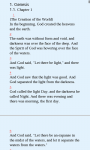Divine Scriptures screenshot 4/5
