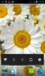 Beautiful Flowers live 3d wallpapers screenshot 2/6