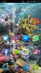 Free Aquarium Live HD Wallpapers screenshot 4/4