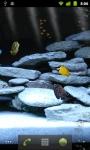 Dream Aquarium LWP screenshot 4/4