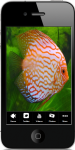 Tropical Aquarium Fish screenshot 1/4