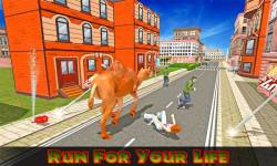 Angry Camel Rampage screenshot 1/4