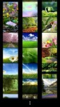 Spring Wallpapers by Nisavac Wallpapers screenshot 1/4