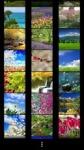 Spring Wallpapers by Nisavac Wallpapers screenshot 2/4