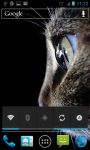 HD Wallpapers Animals in Zoo screenshot 5/6
