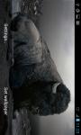 HD Wallpapers Animals in Zoo screenshot 6/6