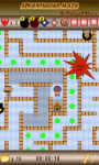 Adventurous Maze screenshot 5/6