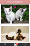 Free Cute Cats Wallpaper screenshot 2/5