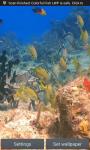 COLORFUL FISH IN THE SEA LIVE WALLPAPER screenshot 1/3