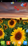 Sunflower Live Wallpaper Best screenshot 1/4