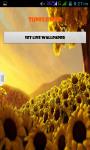 Sunflower Live Wallpaper Best screenshot 3/4