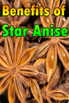 Benefits of Star Anise screenshot 1/3