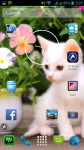 Cat Wallpaper Borders screenshot 6/6