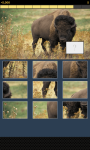 Animal Picture Puzzle screenshot 2/6