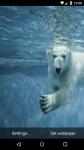 Beautiful Polar Bear Live Wallpaper HD screenshot 6/6
