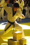 Taekwondo Forms screenshot 1/1