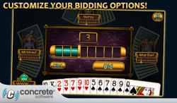 Aces Spades screenshot 4/6