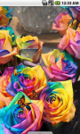 Rainbow Roses Romantic Live Wallpaper screenshot 3/4
