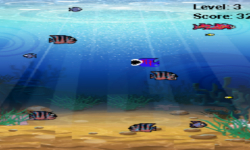 Fish Hunting for android screenshot 4/5