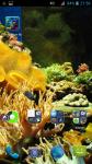 Fish Aquarium HD Wallpaper Live screenshot 4/4