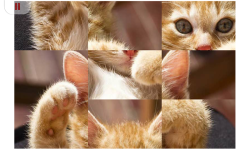 Kitty and Cat Puzzle Tile Jigsaw for Kid and Adult screenshot 4/4