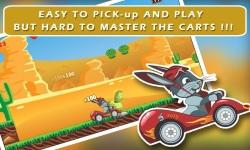 Ace Bunny Turbo Go-kart Race Windows Game screenshot 3/4