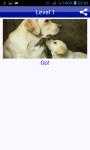 Dog Breeds Quiz Pet Trivia screenshot 2/5