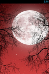 Full Moon Live Wallpaper Free screenshot 1/5