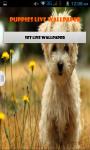 Dog Puppies Live Wallpaper Best screenshot 1/4