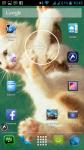 Free Cats Wallpapers screenshot 6/6