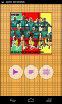 Cameroon Worldcup Picture Puzzle screenshot 2/6