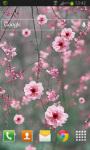 Cherry Blossom LWP screenshot 2/2