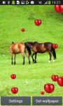 Horses Live Wallpapers screenshot 2/6