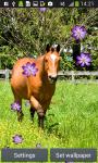 Horses Live Wallpapers screenshot 3/6
