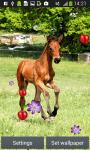 Horses Live Wallpapers screenshot 4/6