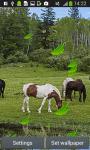 Horses Live Wallpapers screenshot 5/6