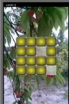Fruit Lag screenshot 3/5