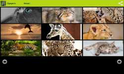 Amazing Animals Wallpapers Free screenshot 1/6