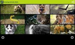 Amazing Animals Wallpapers Free screenshot 2/6