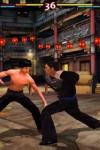 Bruce Lee Dragon Warrior Lite screenshot 1/1
