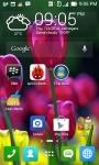 Tulip Wallpapers HD screenshot 4/6